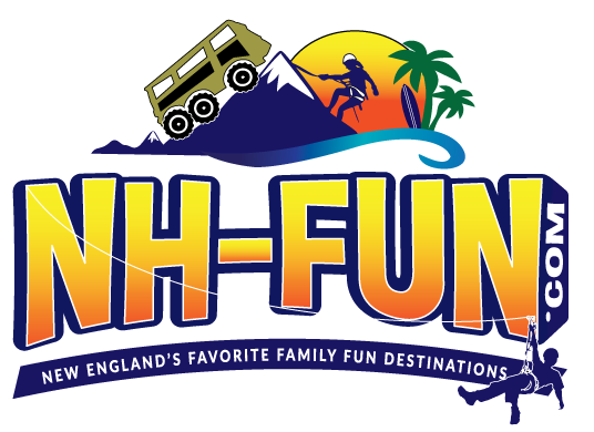 NH-Fun Logo