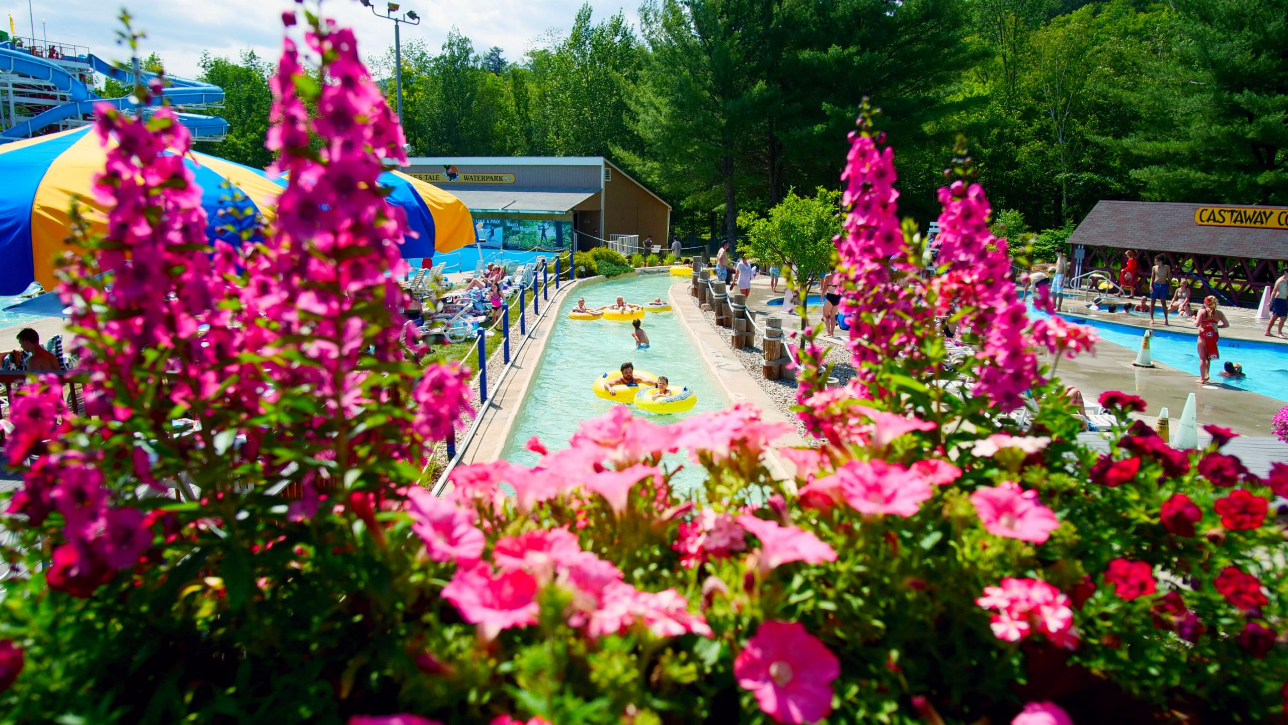 Lazy River with Flowers
